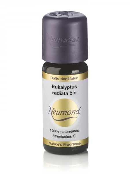 eukalyptus_radiata_bio